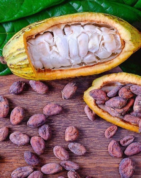 cocoa12